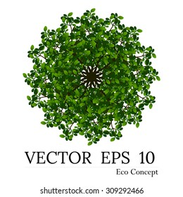 Tree top view for landscape vector illustration decorative branch silhouette and green leaves,design for map