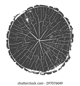 tree trunk. tree cut rings. vector