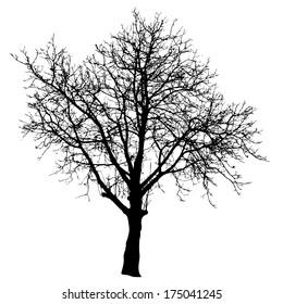Tree vector illustration.