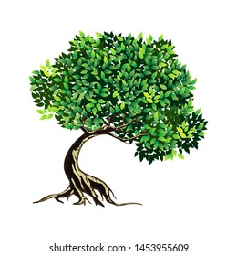 tree vector illustration. roots of banyan tree. mangrove plant
