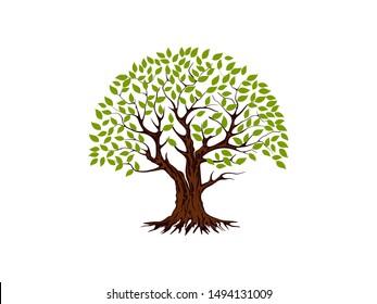 tree vector illustration. roots of banyan tree. mangrove plant
