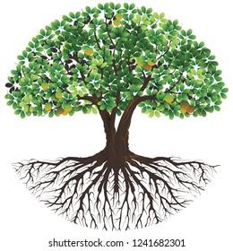 tree vector illustrations, tree logo templates