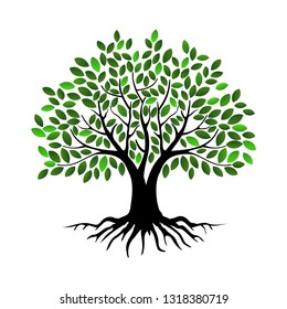 mangrove vector images stock photos vectors shutterstock https www shutterstock com image vector tree vector illustrations roots mangrove isolated 1318380719