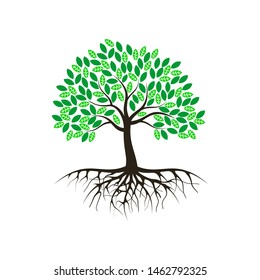 tree vector illustrations, roots, mangrove tree VECTOR isolated
