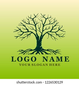 tree vector logo, illustration for trees