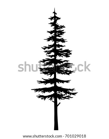 Tree Vector Silhouette Pine Black Evergreen Stockvector Rechtenvrij