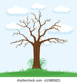 Tree Without Leaves Images, Stock Photos & Vectors ...