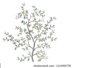 Tree with yellow fruits, branches and leaves