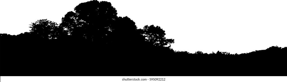 Treeline Silhouette Vector Illustration. Transparent background in vector version. Realistic horizon in black and white. Nature, outdoors theme.