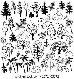 Trees and bushes. Cartoon hand drawn design elements set.