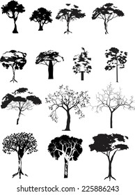 Trees collection isolated on white