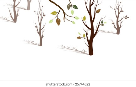 Trees coming to life into the spring season, trees with dramatic shadows, white background, vector illustration