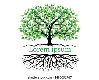 Trees with green leaves look beautiful and refreshing.Tree and roots LOGO style.