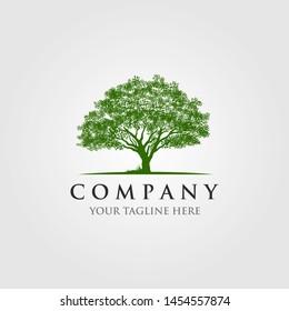 trees logo vector illustration design