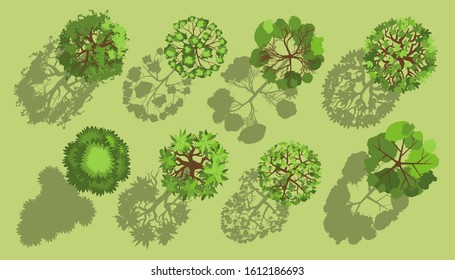 Trees with a realistic shadow. Top view. Different plants and trees vector set for architectural or landscape design. (View from above) Nature green spaces.