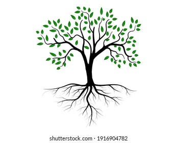 Trees and root with green leaves look beautiful and refreshing. Tree and roots LOGO style.