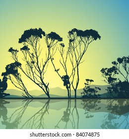 Trees Silhouette with Reflection in Water