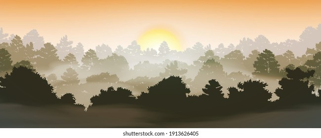 trees silhouettes in forest natural wild with sunset  background, vector illustration