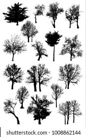 Trees Silhouettes set vector pack art oak, maple, birch, apple, pear.