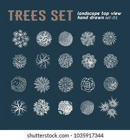 Trees top view. Different plants and trees vector set for architectural or landscape design. View from above