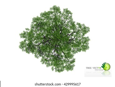 Tree Top View Silhouette Stock Vectors, Images & Vector Art