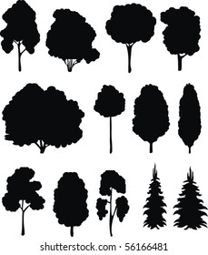 Trees. Vector silhouettes set.