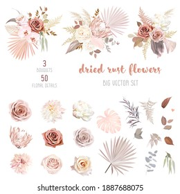 Trendy dried palm leaves, blush pink and rust rose, pale protea, white ranunculus, pampas grass vector design big set.Trendy flowers. Beige, gold, brown, rust, taupe.Elements are isolated and editable