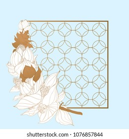 Trendy Flower Vector Design. Pastel medinilla with golden abstract background. EPS10