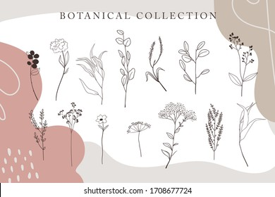 Trendy minimalistic flower graphic sketch drawing, tiny tattoo design, floral botanic elements vector illustration collection. Eps 10 tender set