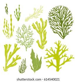 Trendy summer seaweed design. Seamless vector pattern.