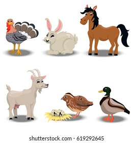 trendy vector set of a happy turkey for thanksgiving Celebration Design, rabbit for easter, goat, horse, duck and quail. Farm animals collection