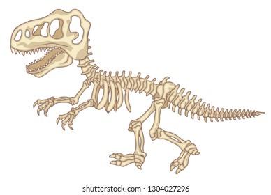 T-Rex, cartoon dinosaur skeleton
