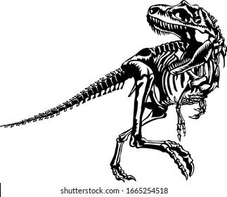 T-rex dinosaur skeleton illustration, vector.