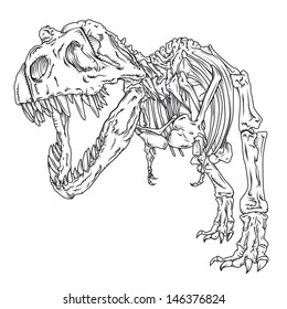 T-Rex Vector Line drawing/T-Rex Line Drawing/Detailed vector line drawing of a Tyrannosaurus skeleton, easy to edit and size, 1 color used (black) :) colour version also in my portfolio