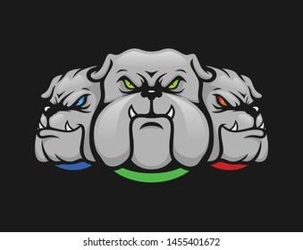 tri bull dog angry face, illustration head angry bulldog