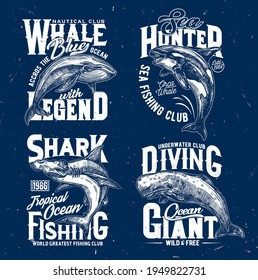 Trophy fishing and ocean diving club t-shirt print template. Blue whale, orca or killer whale and hammerhead shark, cachalot engraved vector. Clothing prints with ocean big mammal and marine predator