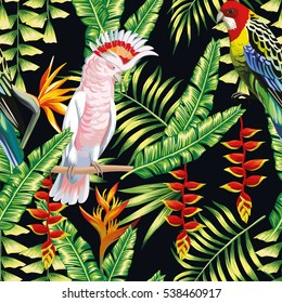 Tropic bird macaw and multicolor parrot on the background exotic lobster claws flower, strelitzia and palm leaf. Print summer floral plant. Nature animals wallpaper. Seamless vector pattern