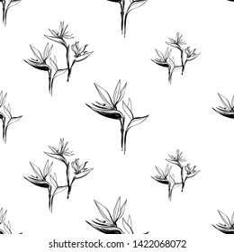 Tropic outline floral seamless pattern with black strelitzia and black strelitzia flowers. Tropical wallpaper collection. Sketch in watercolor style. Hand drawn line on white background