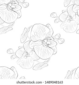 tropica floral, monochrome, vector seamless background. hand-drawn sketch, texture in minimalist style. Orchid branch isolated on white background. bed textiles, wrapping paper, Wallpaper design