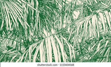 Tropical Abstract Background With Palm-Tree Leaf. drawing style.aspect ratio 16:9. vector illustration