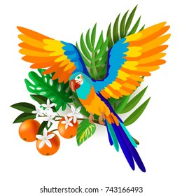 Tropical Ara parrot flying. Palm leaf and exotic plants on white background. Cartoon vector illustration.