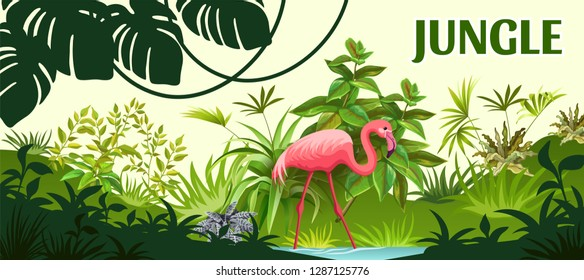 Tropical background with exotic plants jungle. Flamingo, palm and liana. Isolated vector illustration.