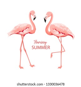 Tropical birds illustration. Pink flamingos set. Two staing flamingos. Elements for invitation card and your template design. Vector illustration.