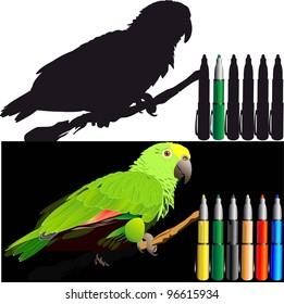 tropical birds (parrots vector image)