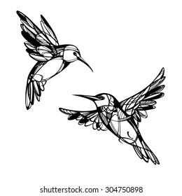 Tropical birds. Vector set.