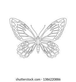 Tropical butterfly for coloring book vector illustration