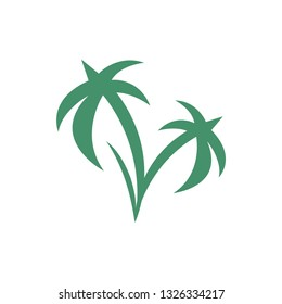Tropical coconut icon