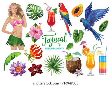 Tropical collection for summer beach party: exotic flowers, leaves, cocktails, parrots and sexy girl. Vector design isolated elements on the white background.