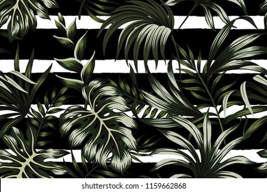 Tropical dark green leaves seamless pattern black and white striped background. Exotic jungle wallpaper.
