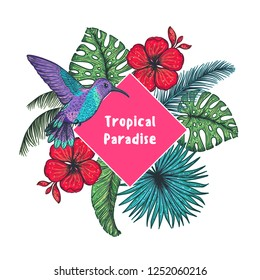 Tropical design template. Colibri and palm leaves vector illustration. Summer design.